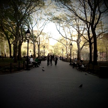 a beautiful day in washington square park