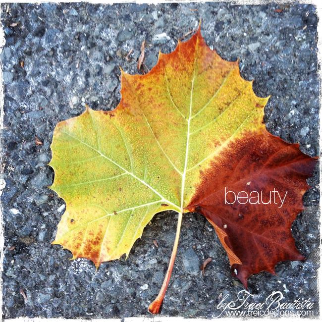 Gratitude_fall_thanksgivingBYtraciBAUTISTA3