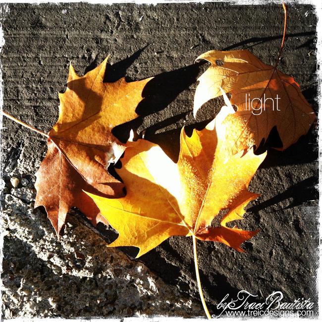 Gratitude_fall_thanksgivingBYtraciBAUTISTA5