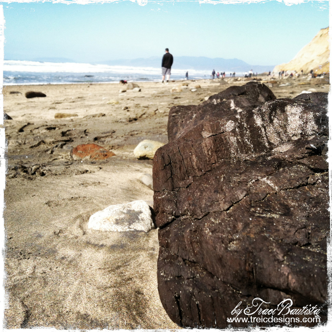 Exploring fort funston by traci bautista - 04