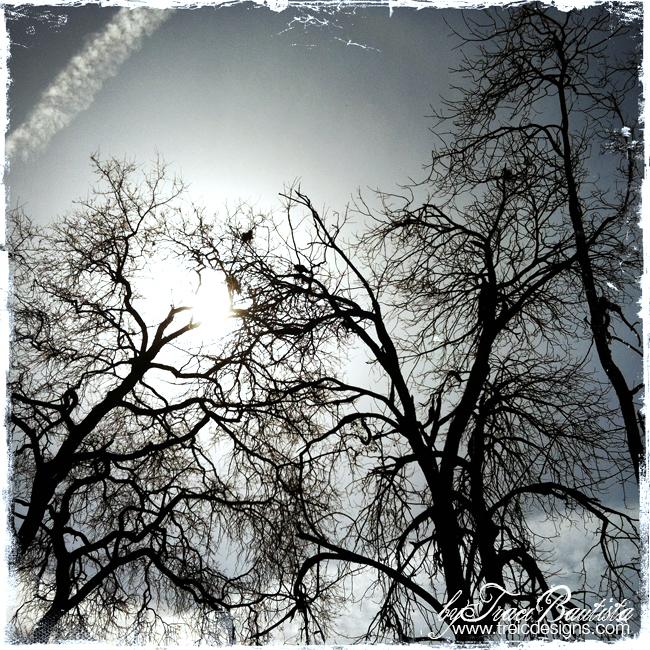 ArtJOURNALINGfridays_treesSKY4_by_Traci_Bautista