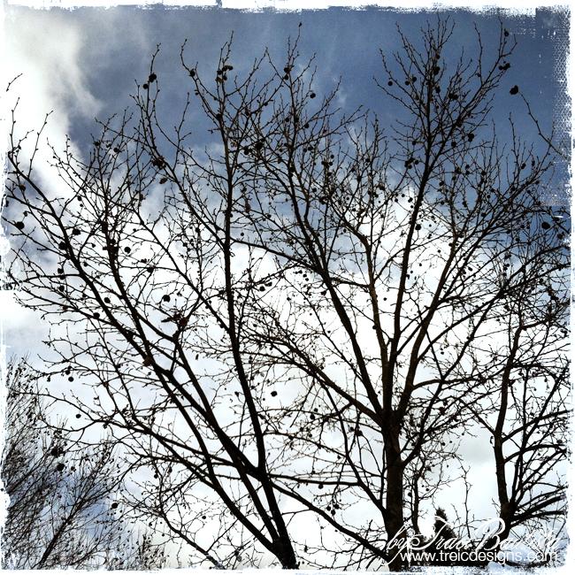 ArtJOURNALINGfridays_treesSKY5_by_Traci_Bautista