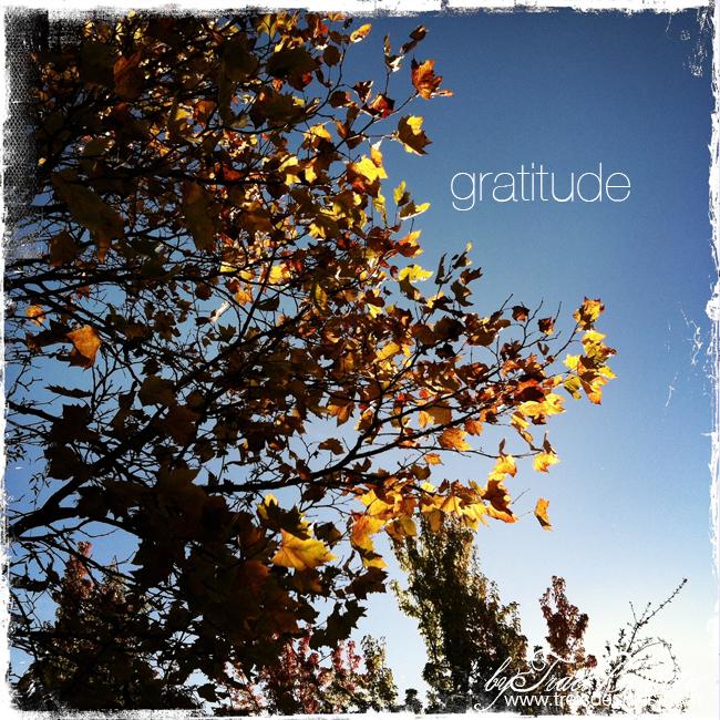 Gratitude_fall_thanksgivingBYtraciBAUTISTA