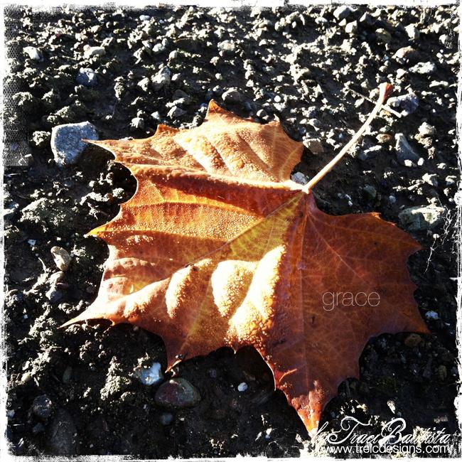 Gratitude_fall_thanksgivingBYtraciBAUTISTA8