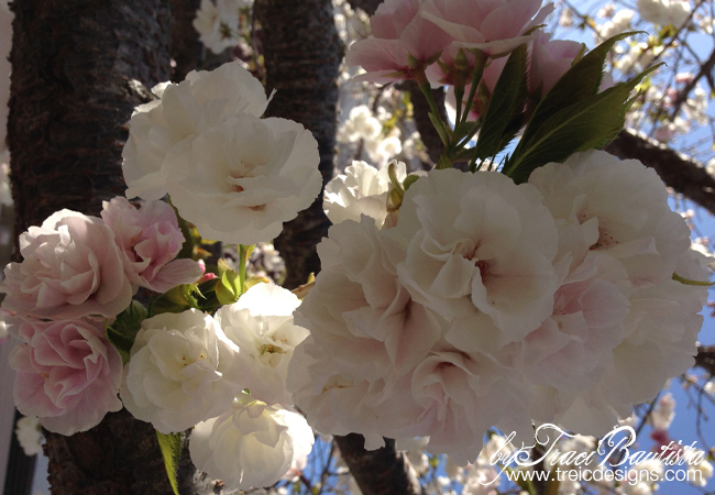 Spring_studioupdates_byTraciBautista_6