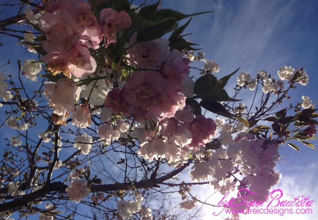 Spring_studioupdates_byTraciBautista_4
