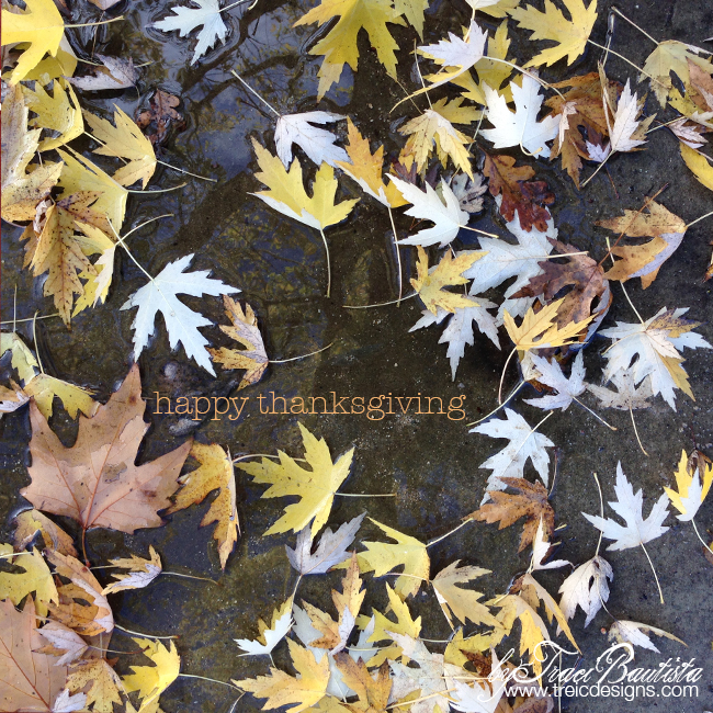 Happy-thanksgiving1_byTraciBautista