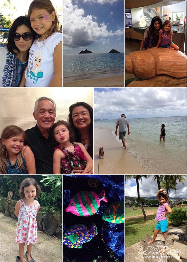 Hawaii2014b_tracibautista
